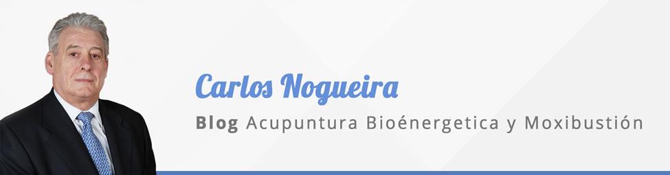 blog-carlos-nogueira