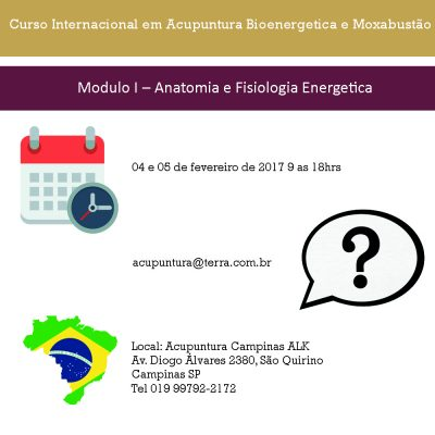 Curso Internacional em Acupuntura Bioenergetica e Moxabustão ( Campinas SP.)